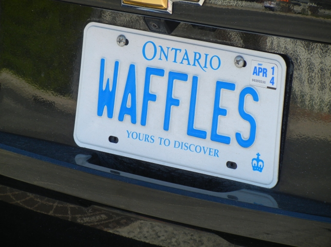 The owners have an awesome and appropriate license plate: Waffles